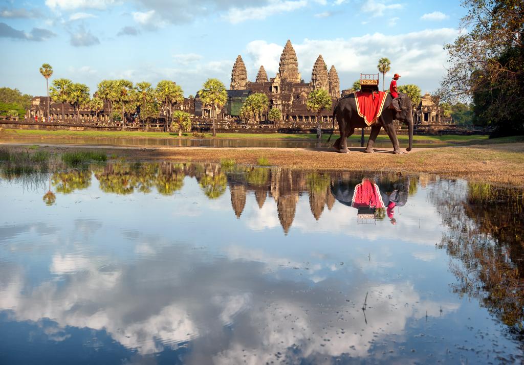 angkor wat elephant cambodia holiday